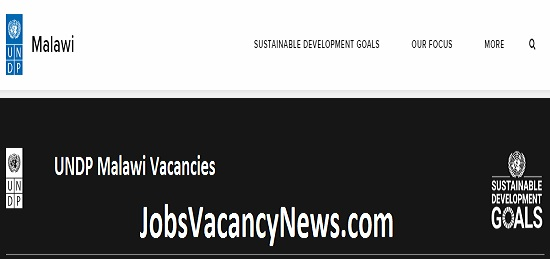 UNDP Malawi Vacancies 2020 - Get NGO Jobs in Malawi UNDP