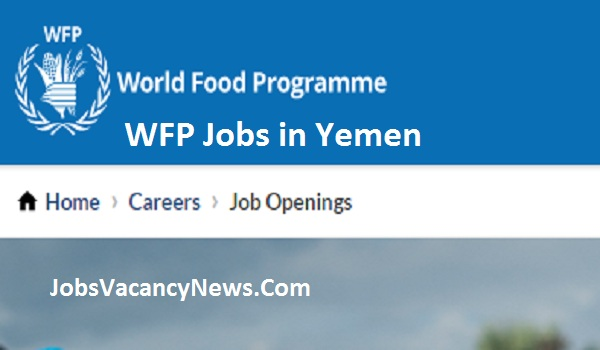 WFP Jobs in Yemen