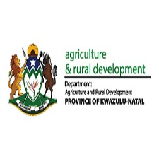 KZN Rural Development Department Vacancies 2021 | KZN Rural Development Department Jobs in Cedara